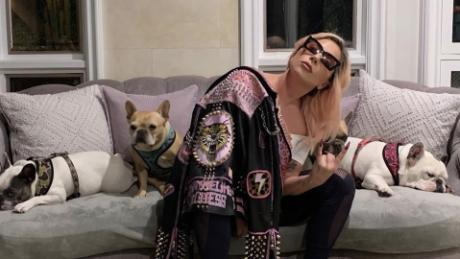 Lady Gaga's two French bulldogs have been returned safely, LAPD says - CNN